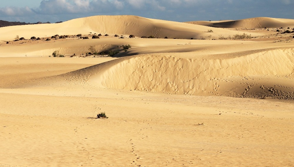 fuerteventura corralejo dunas