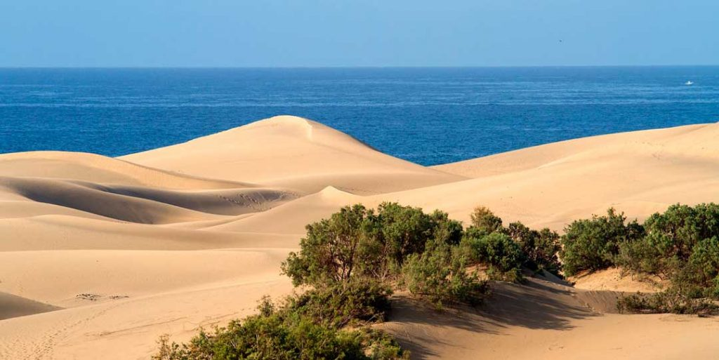 vuelos desde Sevilla: Gran Canaria